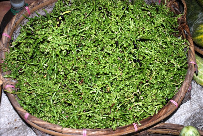 Indian spinach - World Crops Database