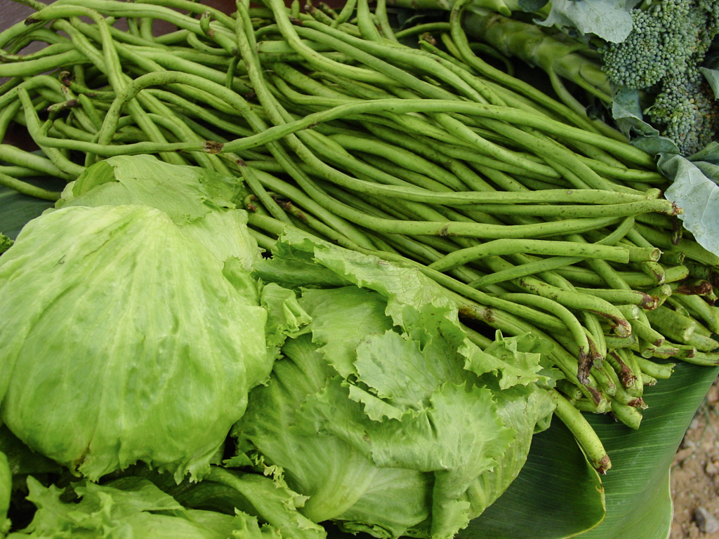 Vegetables - World Crops Database