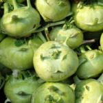 Crops database - Vegetables - Kohlrabi